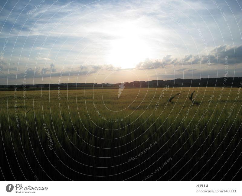 Sky Nature Blue White Sun Summer Joy Loneliness Clouds Calm Far-off places Landscape Lanes & trails Small Bright Horizon