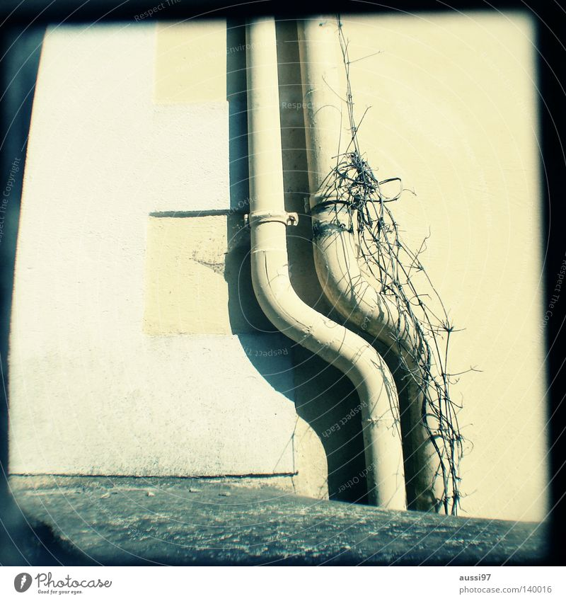 Water Fear Living or residing Concentrate Analog Pipe Rainwater Grid Parallel Viewfinder Hazy Focal point Lightshaft