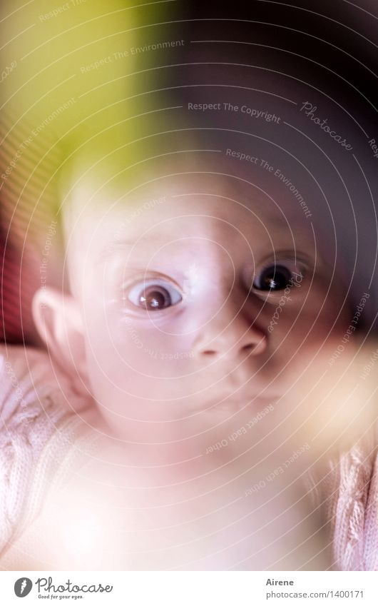 Big eyes Human being Baby Infancy Head Eyes 1 0 - 12 months Lie Looking Large Curiosity Cute Pink Joie de vivre (Vitality) Colour photo Interior shot