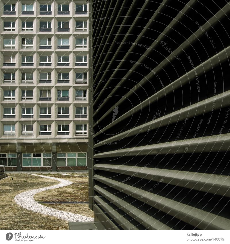 City Berlin Window Garden Stone Lanes & trails Park Line Architecture Success Concrete Future Roof Square Doomed