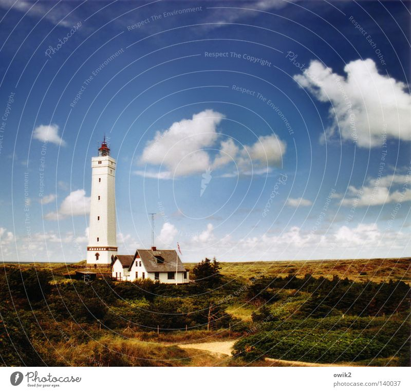 Blåvands Fyr Beautiful Relaxation Leisure and hobbies Summer Beach Ocean Logistics Landscape Sand Air Sky Clouds Horizon Weather Coast North Sea Lighthouse