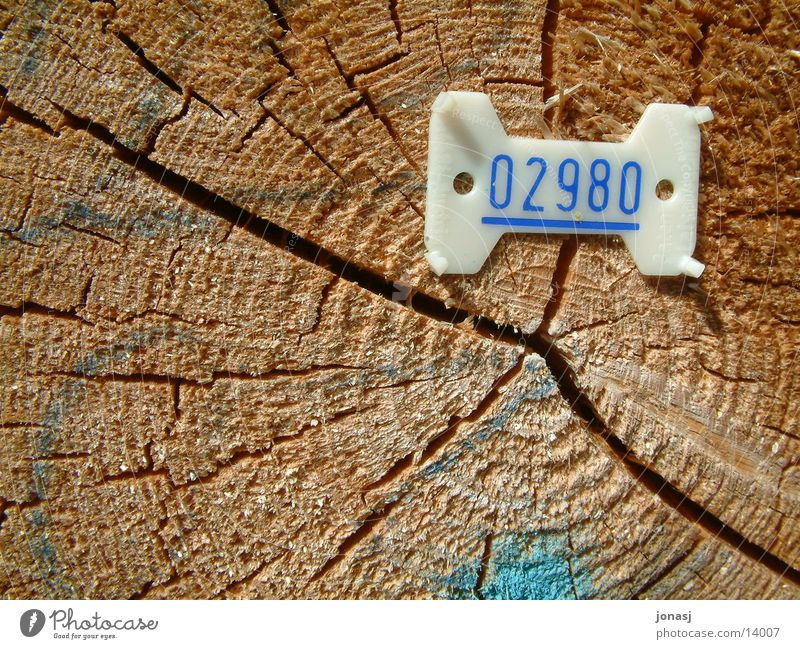 Wood Digits and numbers Things Statue Numbers Fallen
