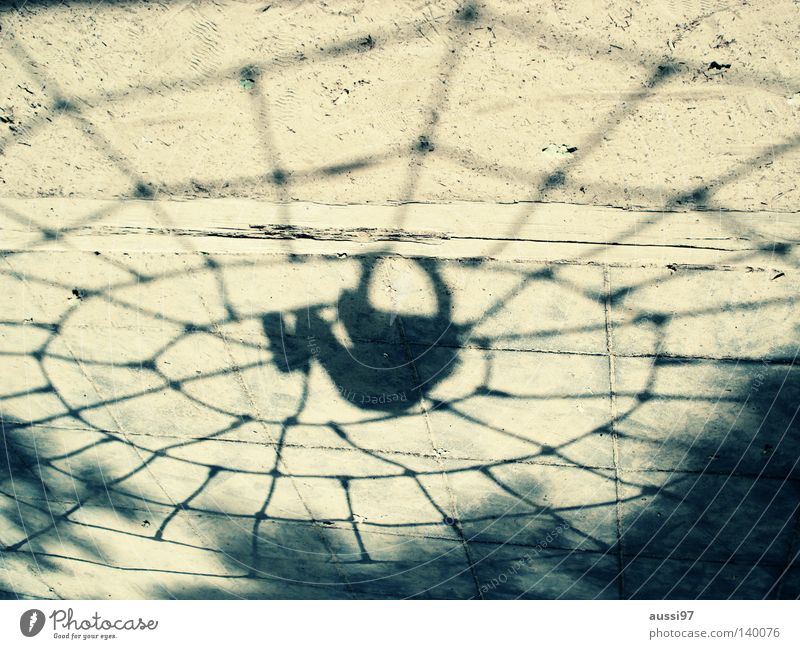 aracs Spider Playground Extreme sports spider's web urge to move superheroes Net black widow