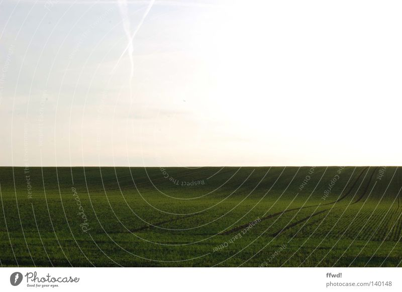 Nature Sky White Green Meadow Grass Lanes & trails Landscape Line Field Waves Horizon Gloomy Soft Peace Simple