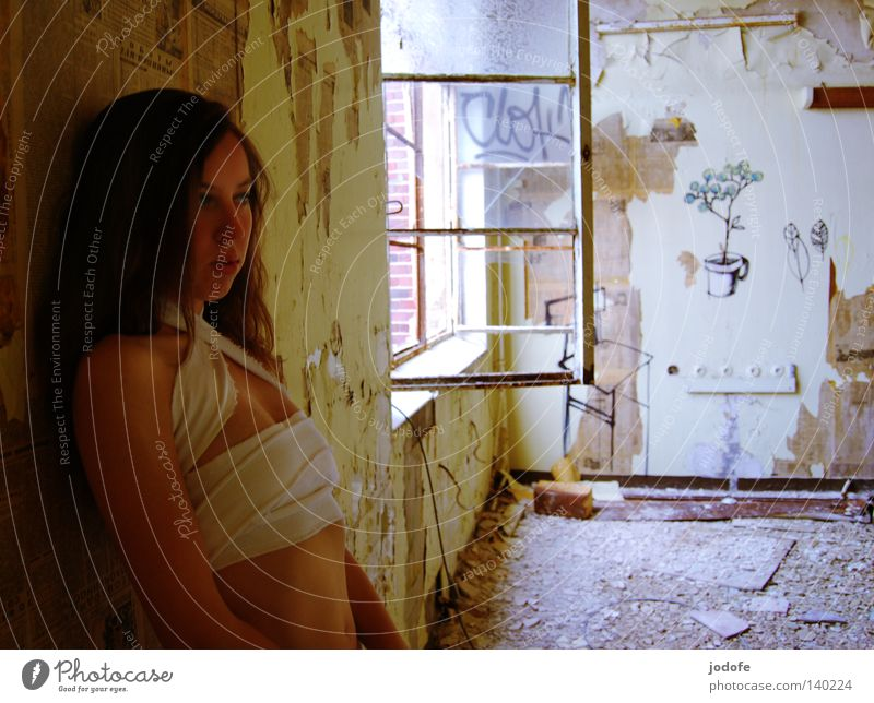 Loneliness. Woman Grief Youth (Young adults) Derelict Building Room Window Window pane Wall (building) Wallpaper Smeared Art Street art Flower Plant
