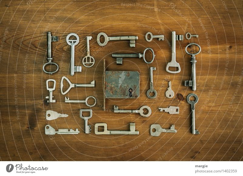 Spoilt for choice: Many different keys are arranged around a door - lock Locksmith Safety Security force Technology Door lock Key Keyhole Collection