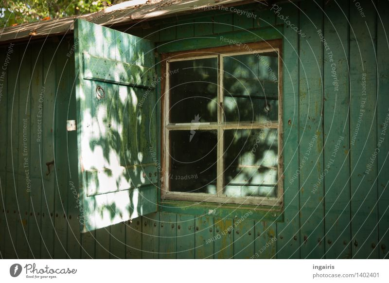 Rustic construction wagon Forest House (Residential Structure) Hut Building Site trailer Window Shutter Wooden house Glittering Illuminate Living or residing