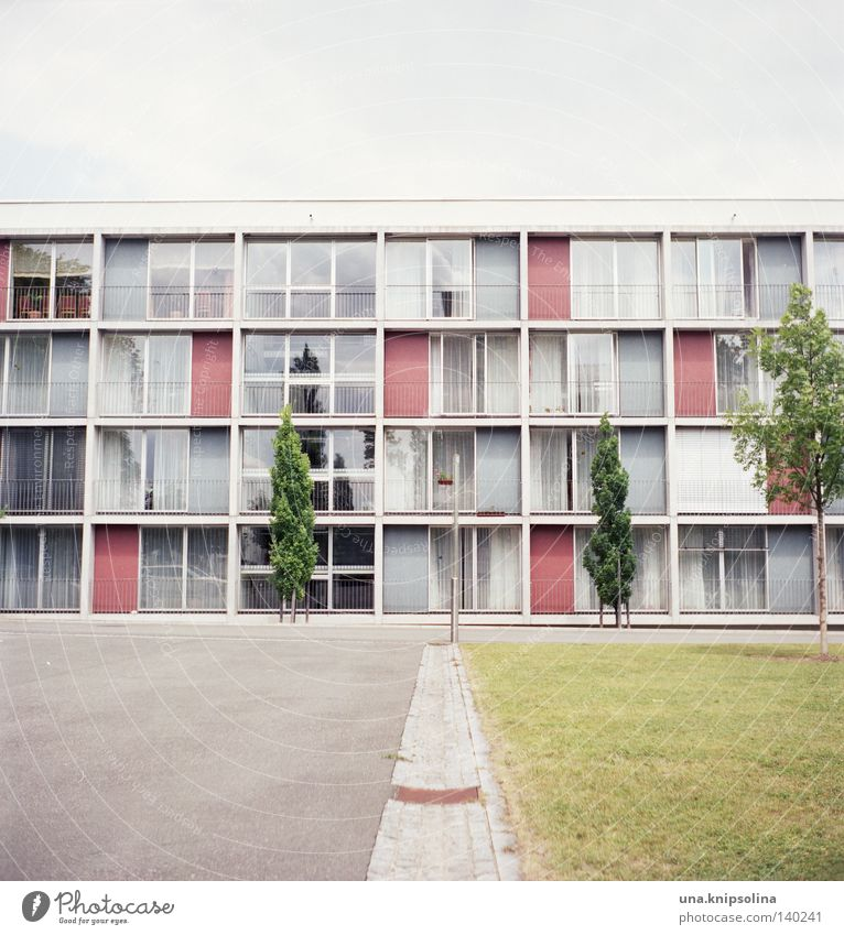 .home Life Living or residing Academic studies Town Architecture Balcony Window Old Modern Green Analog Square Medium format Asphalt Free space