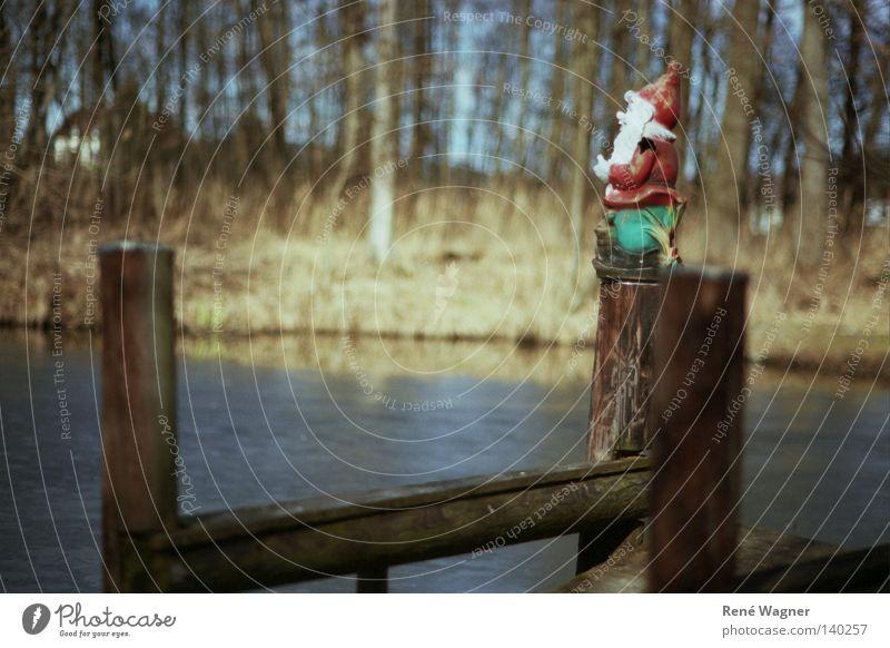 Nature Relaxation Freedom Peace Vantage point Harmonious Pond Austria Dwarf Federal State of Styria