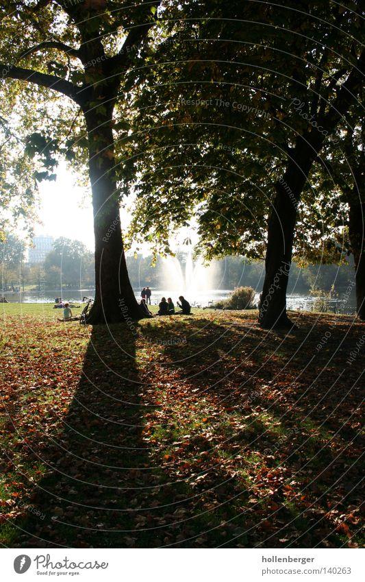 Tree Green Calm Dark Cold Autumn Meadow Park Orange Berlin Friendliness Autumn leaves Well Fountain Water fountain Victoriapark