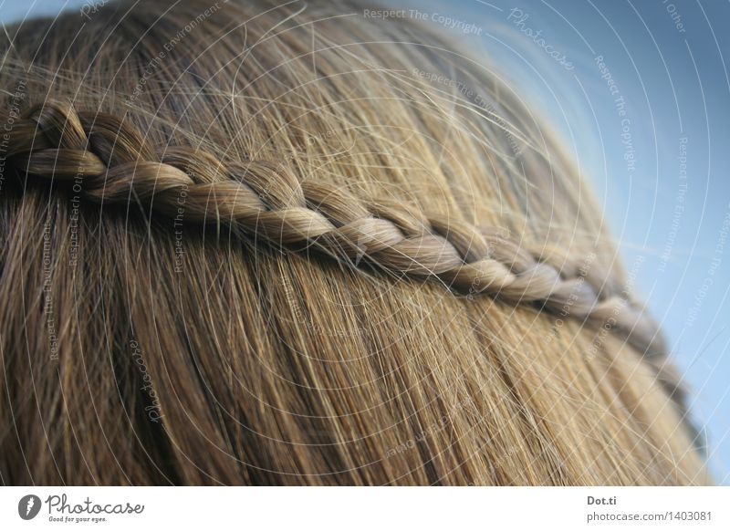 wattle Feminine Girl Woman Adults Head Hair and hairstyles 1 Human being Blonde Long-haired Braids Hip & trendy photocase braided hairstyle Plaited Colour photo