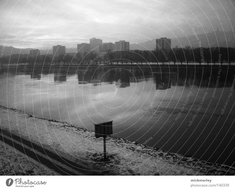 Nature Water Sky Tree City Winter Snow Lanes & trails Weather Signs and labeling High-rise Skyline River bank Black & white photo Linz (Danube)