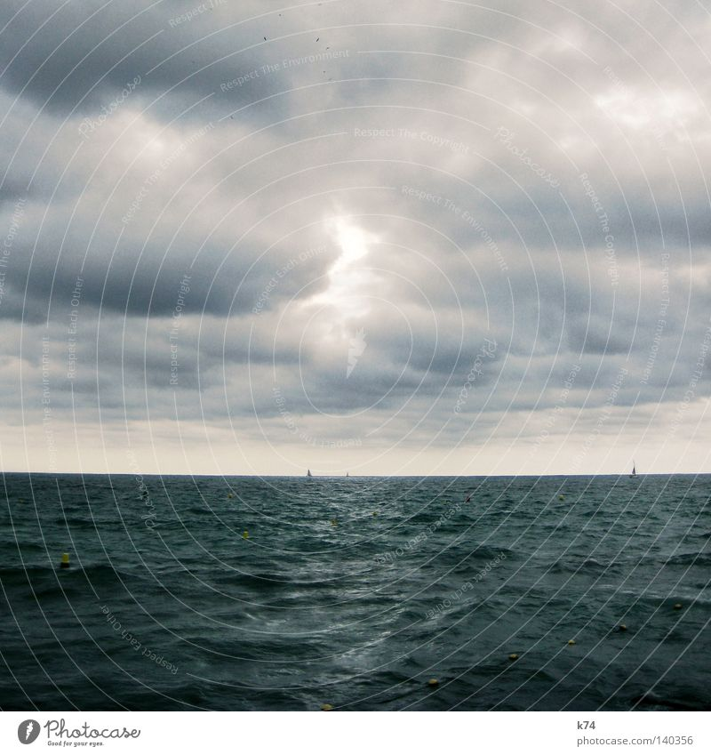 seascape Ocean Lake Water Elements Clouds Sky Bird Watercraft Sailing Maritime Waves Gale Wind Glittering Light Blue Nature Change Meteorology Weather Emotions
