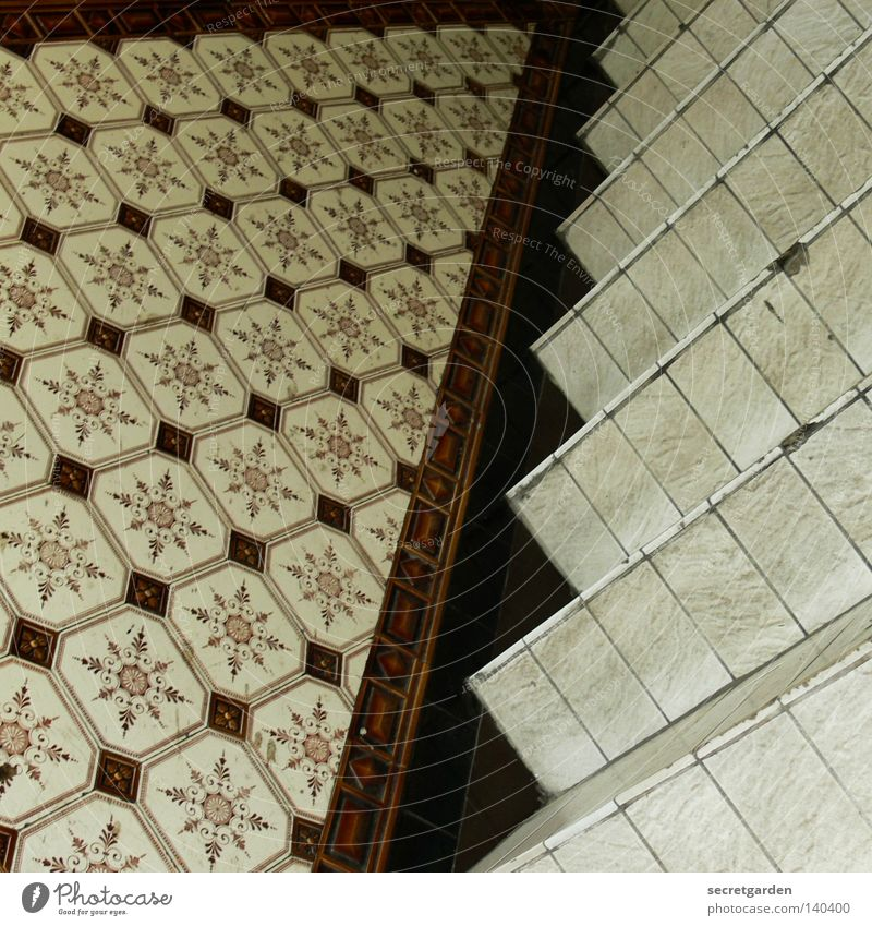 square tiles in square. Staircase (Hallway) Mixture Pattern Brown Seventies Broken Alcohol-fueled Under House (Residential Structure) Interior design Art