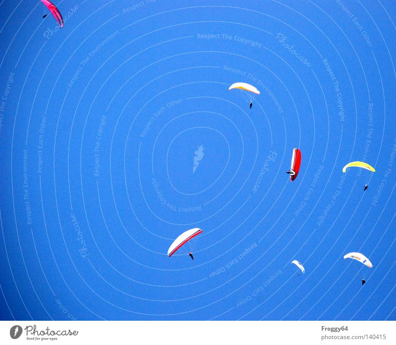 Sky Sports Playing Above Air Warmth Weather Airplane Flying Beginning Tall Aviation Umbrella Sporting event Competition Paragliding