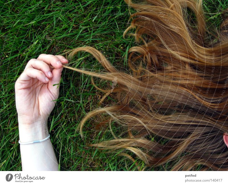 Woman Human being Green Life Death Grass Hair and hairstyles Bright Skin Blonde Arm Sleep Peace Lie Fragrance Former