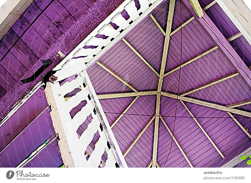 Purple break Pavilion Roof Steep Vertical Winding staircase Staircase (Hallway) Banister Handrail Wood Wooden structure Violet Detail