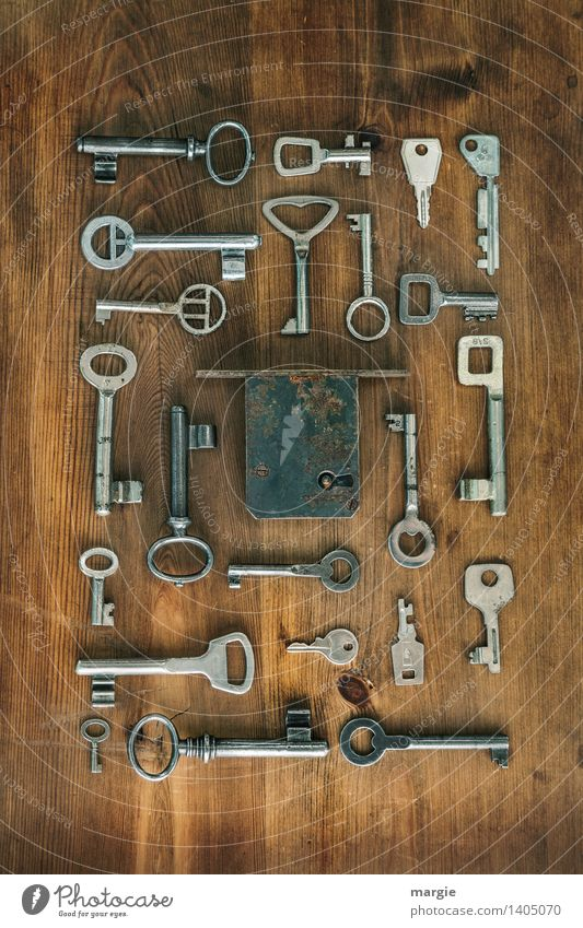 Power of the keys: One fits! Many different keys are arranged around a door lock Profession Craftsperson Locksmith Tool Technology Wood Glass Brown Silver