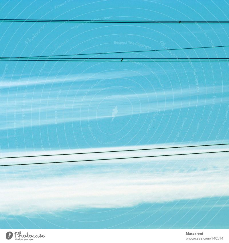 Sky Blue Summer Clouds Bird Energy industry Speed Electricity Soft Industry Cable Steel cable Solar Power Boredom Motoring Transmission lines