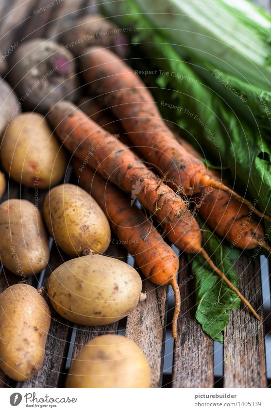 healthy vegetable Food Vegetable Nutrition Healthy Gardening Agriculture Forestry Nature Autumn Carrot Potatoes Red beet Chinese cabbage Wood Authentic Natural