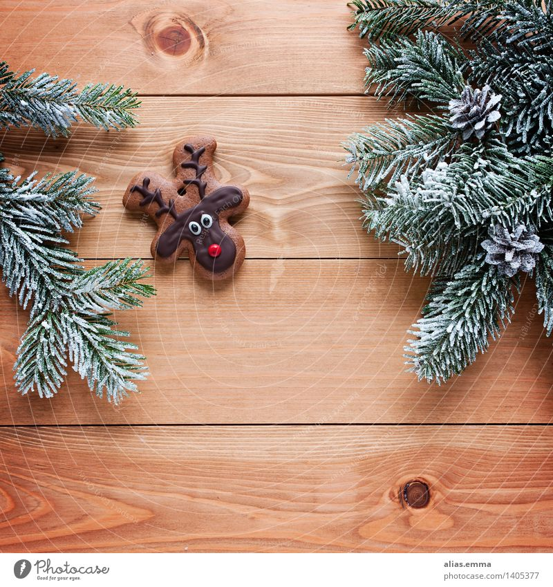 "Rudi :) Dough Baked goods Candy ""Biscuits cookie"" Feasts & Celebrations Christmas & Advent Animal Wild animal Reindeer Cute Sweet Brown Colour photo"