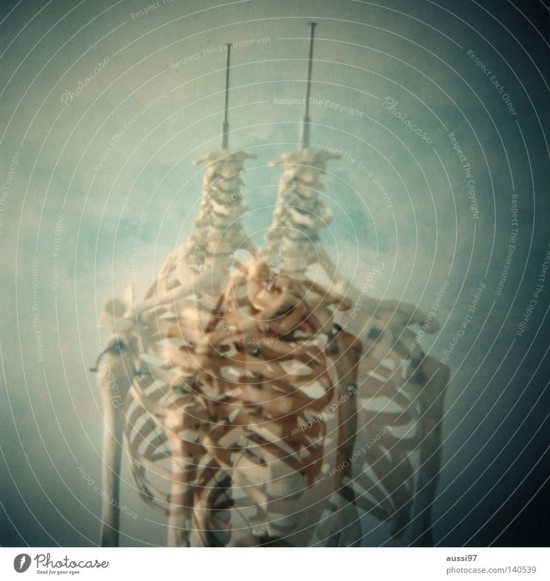 Hand Fingers Doctor Italy Science & Research Analog Double exposure Ribs Skeleton Medium format Anatomy Spokes Thorax Ossi