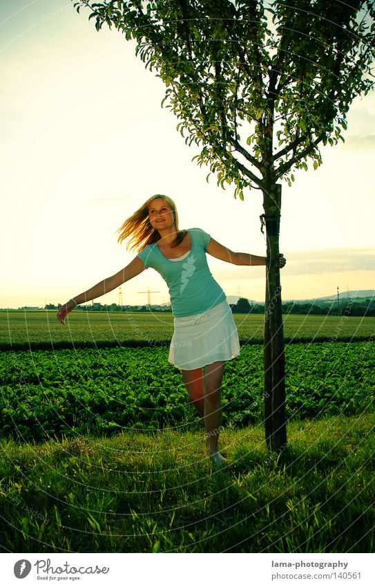 Woman Nature Sky Tree Sun Green Summer Joy Relaxation Meadow Emotions Freedom Hair and hairstyles Field Wind