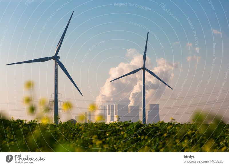 Competition Neurath power station Agriculture Forestry Energy industry Renewable energy Wind energy plant Coal power station Cloudless sky Summer Autumn