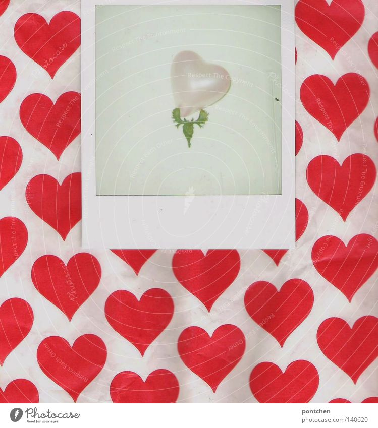 Kitsch. Love, romance, hearts. Polaroid lies on paper with heart pattern and shows antlers with a heart-shaped balloon Valentine's Day Balloon Sign Heart Pink