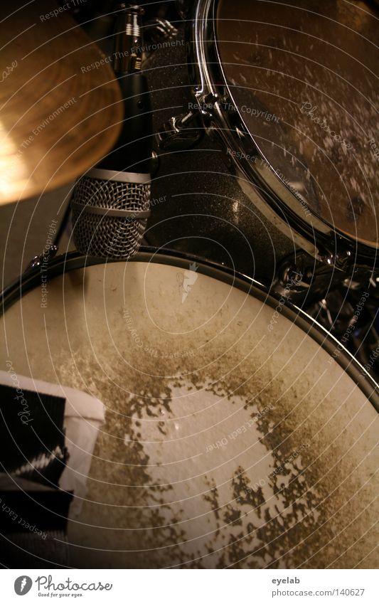 Wood Metal Art Music Shows String Pelt Plastic Concert Statue Workshop Stage Musician Loud Live Blow