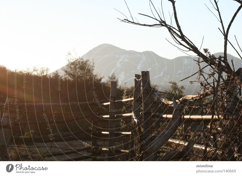 Mountain Wood Landscape Closed Fence Barrier KwaZulu Natal Africa South Africa Wooden fence Drakens Mountains