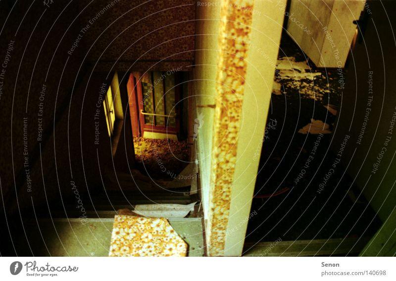 Old Leaf Loneliness Door Stairs Derelict Shabby Hallway