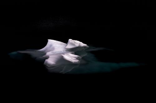 white on black Elements Water Winter Climate change Ice Frost Snow Discover Glittering Cold Black Watchfulness Calm Unwavering Purity Loneliness