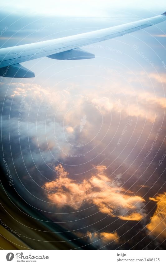 heaven and earth Landscape Sky Clouds Sunrise Sunset Sunlight Climate Weather Aviation Airplane Passenger plane In the plane View from the airplane Flying