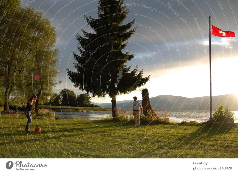 Sky Vacation & Travel Beautiful Summer Water Sun Tree Joy Beach Warmth Meadow Coast Playing Lake Bright Fog