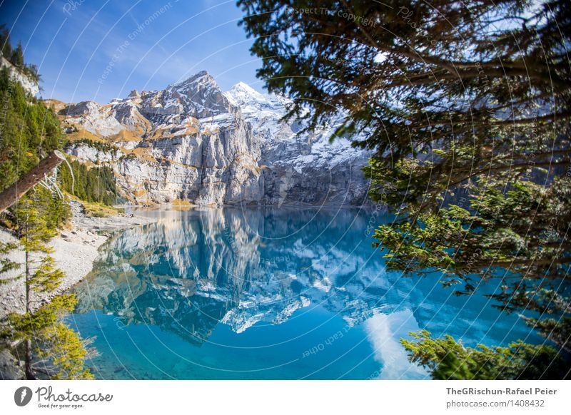 Lake Oeschinesee Nature Landscape Blue Gray Green Black Turquoise White Mountain lake Mirror image Forest Tree Snow Considerable Clean Lake Oeschinen