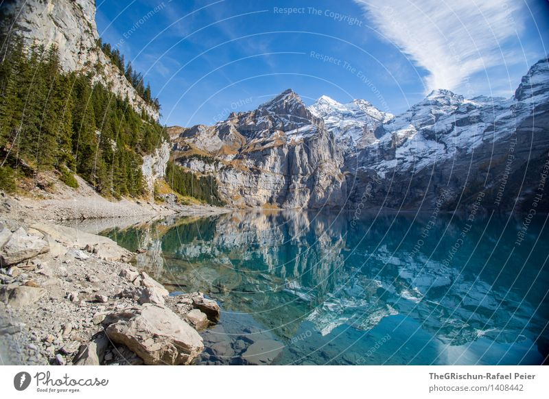 Lake Oeschinesee Environment Nature Landscape Water Blue Gray Green Black Silver Turquoise White Mountain Lakeside Snow Clouds Sky Coniferous forest