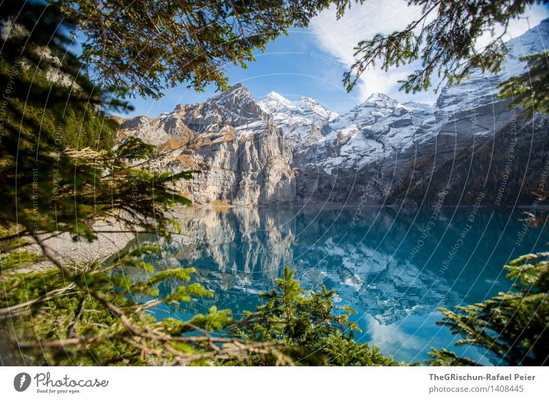 Lake Oeschinesee Environment Nature Landscape Water Brown Gray Green Black Turquoise White Mountain lake Alps Switzerland Lake Oeschinen Reflection Clarity Tree