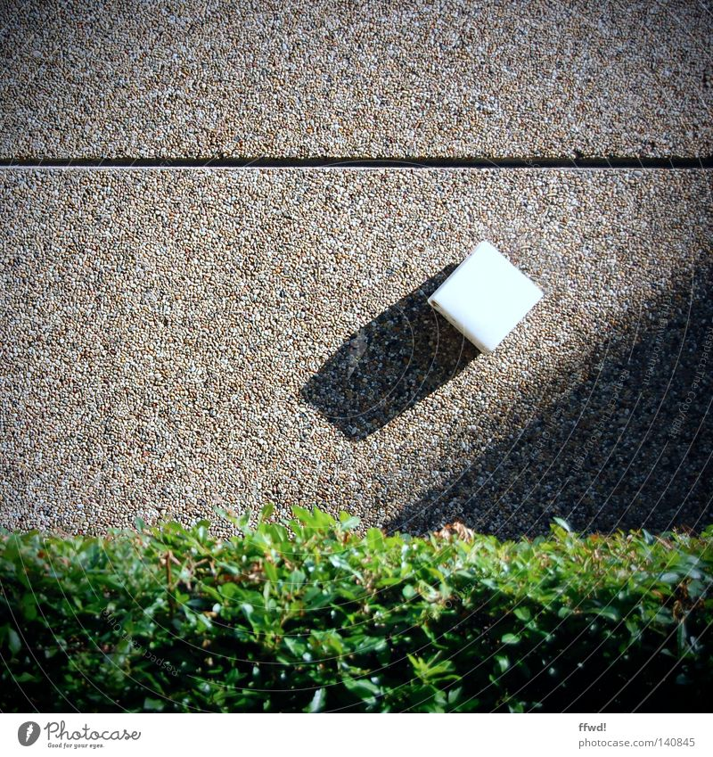 Leaf Lamp Wall (building) Stone Bushes Geometry Crack & Rip & Tear Furrow Hedge Column Horizontal Minerals Drop shadow Stone wall