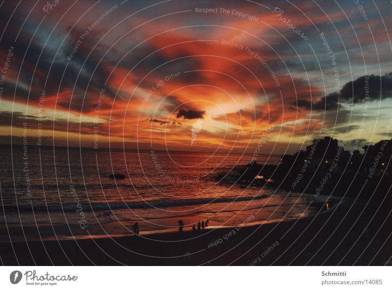 Human being Water Sky Sun Ocean Beach Clouds Blaze Europe