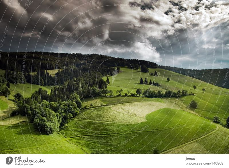 Sky Nature Blue White Green Tree Summer Clouds Black Landscape Meadow Mountain Lanes & trails Moody Weather Field