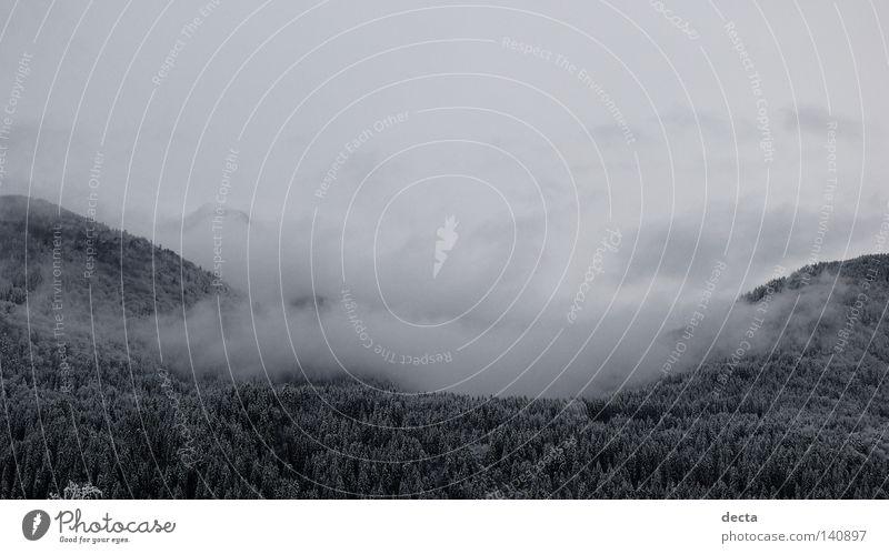 winterclouds Winter Clouds Snow grey Black carinthia schnee wolken grau schwarz weiß