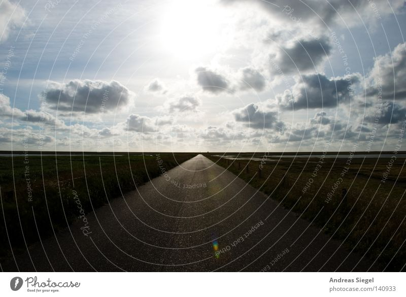 into the light Clouds Sun Lanes & trails Street Symmetry Horizon Infinity Light Back-light Norddeich Coast Border area Hope Contentment Accomplishment Awareness