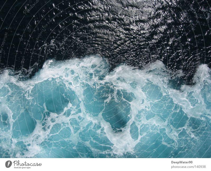 Vacation & Travel Water Ocean Warmth Freedom Watercraft Glittering Vantage point Driving Foam Frozen water