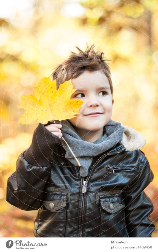 Here I am Child Infancy 1 Human being 3 - 8 years Smiling Autumn Autumnal Autumn leaves Automn wood Leather jacket pretty Beautiful Leaf Indicate Impish