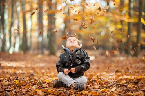The leaves trickle quietly Masculine Child Boy (child) Infancy Life 1 Human being 3 - 8 years Sit Autumn Autumnal Automn wood Autumn leaves Leaf To fall
