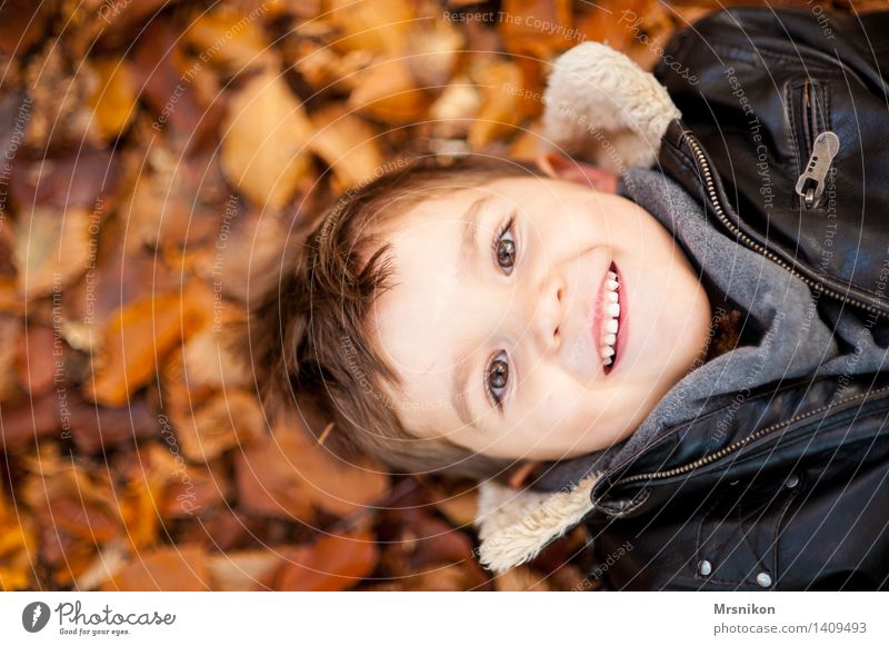 Happy Day Human being Child Toddler Boy (child) Infancy Head 1 3 - 8 years Nature Autumn Weather Beautiful weather Leaf Smiling Laughter Lie Leather jacket