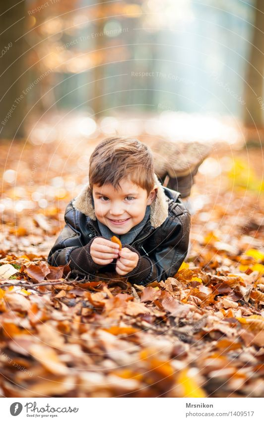Human being Child Joy Forest Life Autumn Boy (child) Happy Laughter Lie Infancy Happiness Smiling Toddler Autumn leaves Autumnal