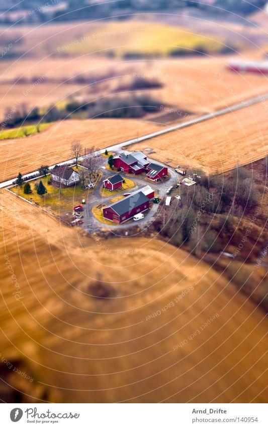 mini farm Tilt-Shift Small Miniature Pattern Surrealism Model landscape Bird's-eye view Street Green Brown Tree House (Residential Structure) Village Field