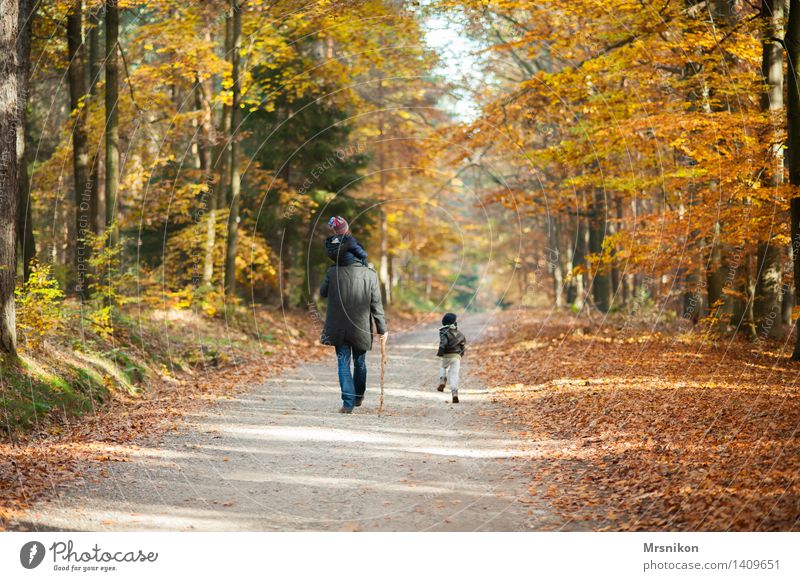 Human being Child Man Forest Adults Life Autumn Group Going Masculine Hiking Infancy Baby To go for a walk Toddler Father
